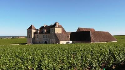 Замок и виноградник