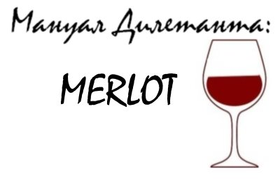 О сорте винограда Мерло